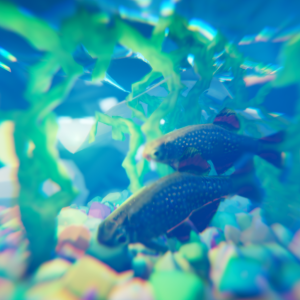 Aquarium - 30 minute speed render